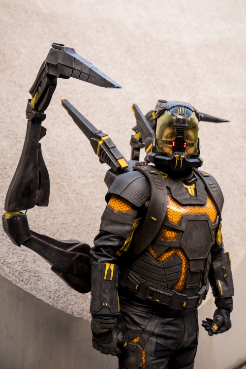 Yellowjacket Cosplay by Red-Pym Cosplay